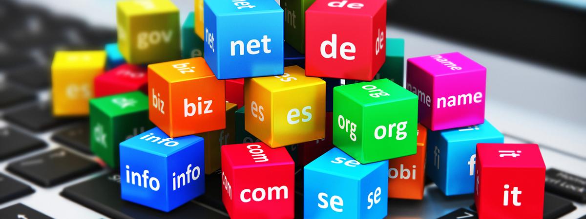domain regist or transfer service